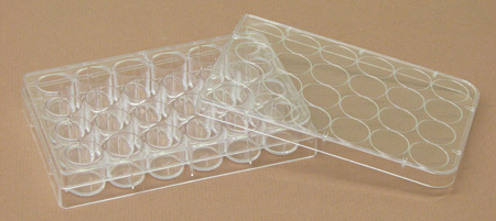 Microplates 24 Well