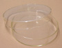 Petri Culture Dishes Glass 100mm Dia pk of 10