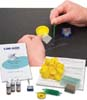 Simple Stain Kit for Plant Tissue